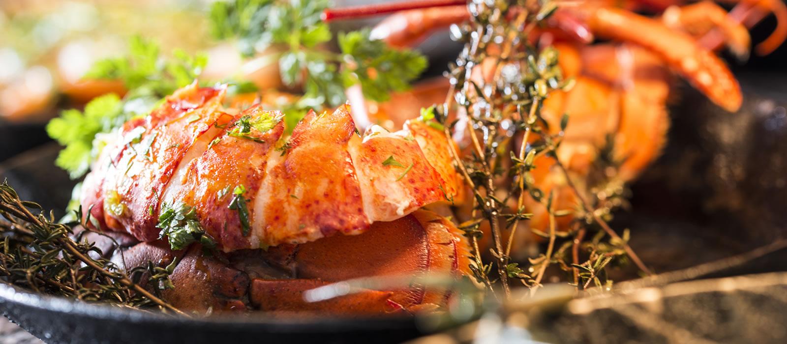 Speisekarte. Fisch und Fleisch. Mediterrane Küche. Hamburg.